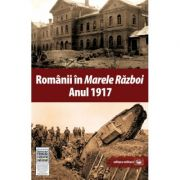 Romanii in Marele Razboi. Anul 1917. Documente, impresii, marturii - Mihail E. Ionescu (coord.)
