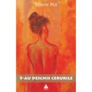 S-au deschis cerurile - Sorin Pui