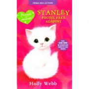 Stanley, pisoiul fara adapost - Holly Webb