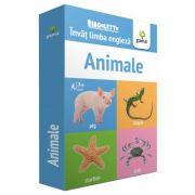Animale. Invat limba engleza. Colectia Bingoletto