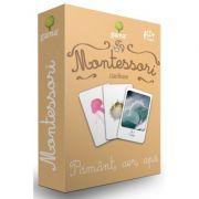 Carti de joc Montessori. Clasificare. Pamant, aer, apa