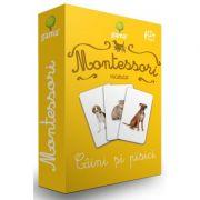 Carti de joc Montessori. Vocabular. Caini si pisici