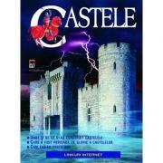 Castele - Lesley Sims
