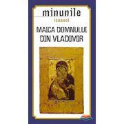 Minunile icoanei Maica Domnului din Vladimir. Traducere din limba rusa de Gheorghita Ciocioi
