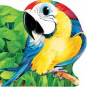 Papagalul. Primii pasi - Scobioala Aurel