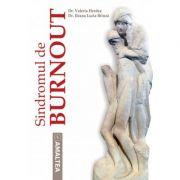 Sindromul de Burnout - Valeria Herdea, Dr. Ileana Lucia Brinza