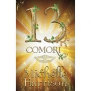 13 Comori - Michelle Harrison