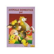Animale domestice - Pui - Carte de colorat