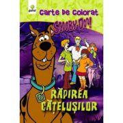 Aventuri de colorat cu ScoobyDoo! - Rapirea Catelusilor