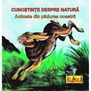 Carti pliante mici - Animale din padurea noastra