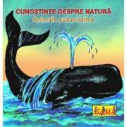 Carti pliante mici - Animale subacvatice
