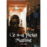 Ce n-a pictat Matisse - Ioana Andrada Tudorie