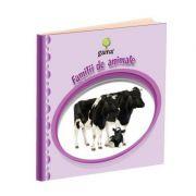 e-Bebe istet - Familii de animale