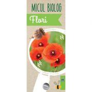 Micul biolog. Flori - Anita van Saan