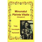 Minunatul Parinte Vitalie (Georgianul)- viata, nevointele, harismele