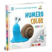 Numero Color. Initiat. Carte de colorat dupa numere