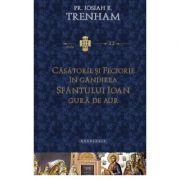 Casatorie si feciorie in gandirea Sfantului Ioan Gura de Aur - Pr. Josiah Trenham