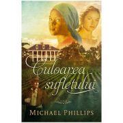Culoarea sufletului Vol. 3 (SERIA Surorile din comitatul Shenandoah) - Michael Phillips