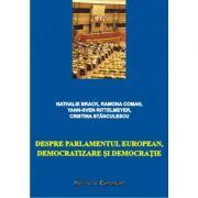 Despre Parlamentul European, democratizare si democratie - Nathalie Brack, Ramona Coman, Yann-Sven Rittelmeyer, Cristina Stanculescu