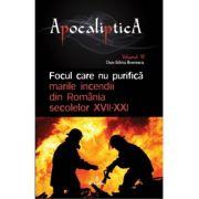 Focul care nu purifica: marile incendii din Romania secolelor XVII-XXI - Dan-Silviu Boerescu