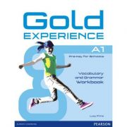 Gold Experience A1 Workbook without key - Lucy Frino