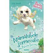 Paddy, catelusul - Lily Small (Seria Animalutele fermecate din Padurea Inrourata)