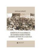 Romanii de pe Valea Sebesului din transeele Marelui Razboi la Marita Adunare de la Alba Iulia, 1914-1919 - Nicolae Afrapt