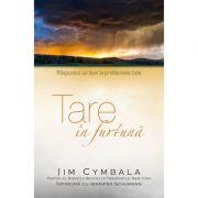 Tare in furtuna. Raspunsul lui Isus la problemele tale - Jim Cymbala