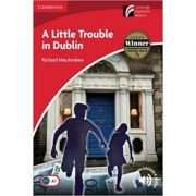 A Little Trouble in Dublin - Richard MacAndrew, Level 2 Elementary (Reprint Edition)