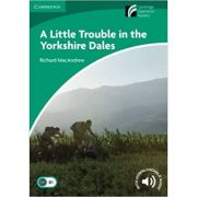 A Little Trouble in the Yorkshire Dales - Richard MacAndrew (Level 3)