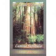 Lumina sufletului - Primul volum din seria Invata sa te ierti (Luule Viilma)