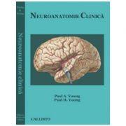 Neuroanatomie Clinica
