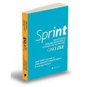 Sprint. Cum sa rezolvi probleme importante si sa testezi idei noi in doar cinci zile - Jake Knapp, John Zeratsky, Braden Kowitz