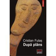 Dupa plans - Cristian Fulas