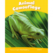 Level 6. Animal Camouflage CLIL - Caroline Laidlaw