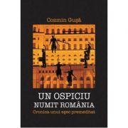 Un ospiciu numit Romania. Cronica unui esec premeditat - Cozmin Gusa
