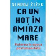 Ca un hot ziua in amiaza mare - Slavoj Zizek
