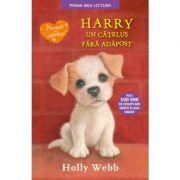 Harry, un catelus fara adapost. Prima mea lectura - Holly Webb