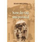 Scene din viata unui provincial - Ioan Meghea