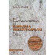 Din practica lucrarilor de eliminare a umiditatii capilare din zidarii - Tiberiu Streza