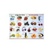 Plansa: Fructe - Legume