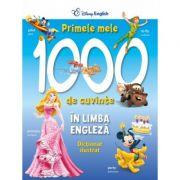 Primele 1000 de cuvinte in limba engleza. Dictionar ilustrat - Disney English