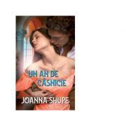 Un an de casnicie - Joanna Shupe
