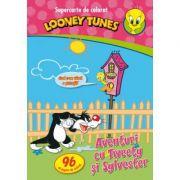 Looney Tunes. Aventuri cu Tweety si Sylvester. Supercarte de colorat