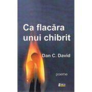 Ca flacara unui chibrit - Dan C. David