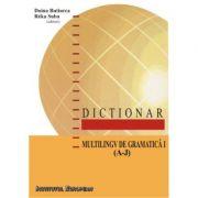 Dictionar multilingv de gramatica I (A-J) - Doina Butiurca, Reka Suba