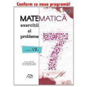 Matematica - Exercitii si probleme pentru clasa a VII-a - 2019 - lucrare elaborata pe baza noii Programe