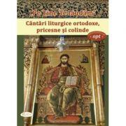 Pe Tine Te laudam. Cantari liturgice ortodoxe, pricesne si colinde - Natalia Corlean