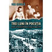 Trei luni in Pocutia. Actiuni ale Diviziei 8 Infanterie (23 mai-24 august 1919) - Ion Giurca