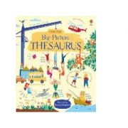 Big Picture Thesaurus - Rosie Hore